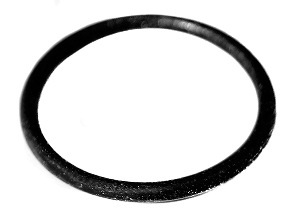 O Ring Viton Rubber, 22mm x 2mm, 05000095